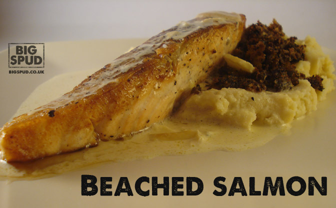 beached salmon recipe